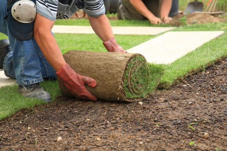 Układanie trawy
